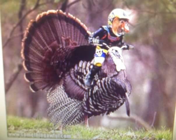 Bikesmith Thanksgiving Hours 2016
